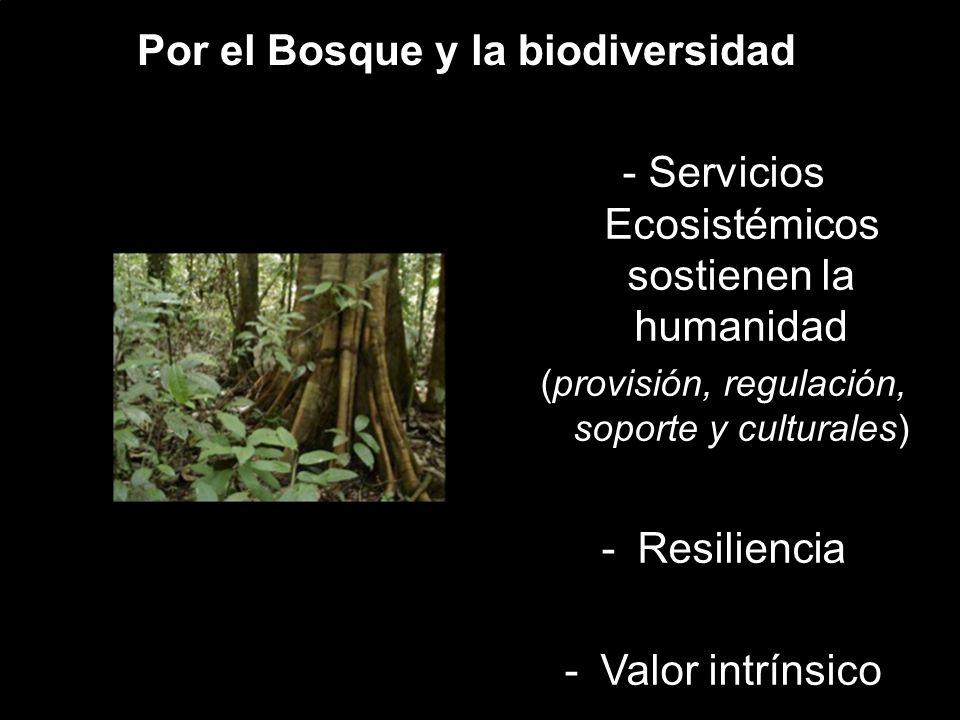 Por el Bosque y la biodiversidad - Servicios Ecosistémicos sostienen la humanidad (provisión, regulación, soporte y culturales) -Resiliencia -Valor intrínsico