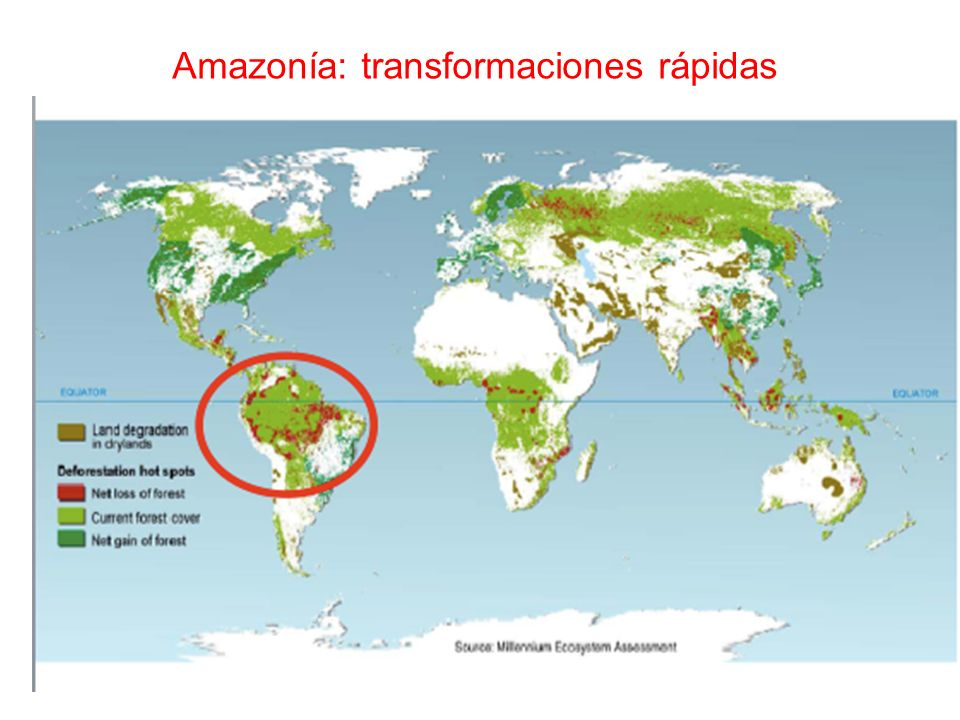 Amazonía: transformaciones rápidas