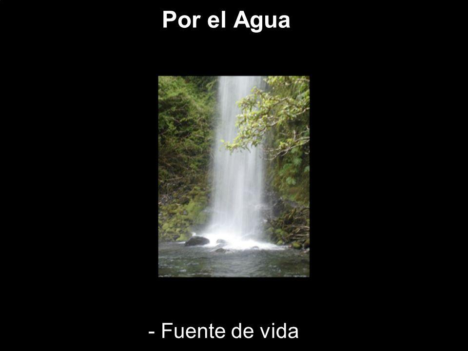 Por el Agua - Fuente de vida