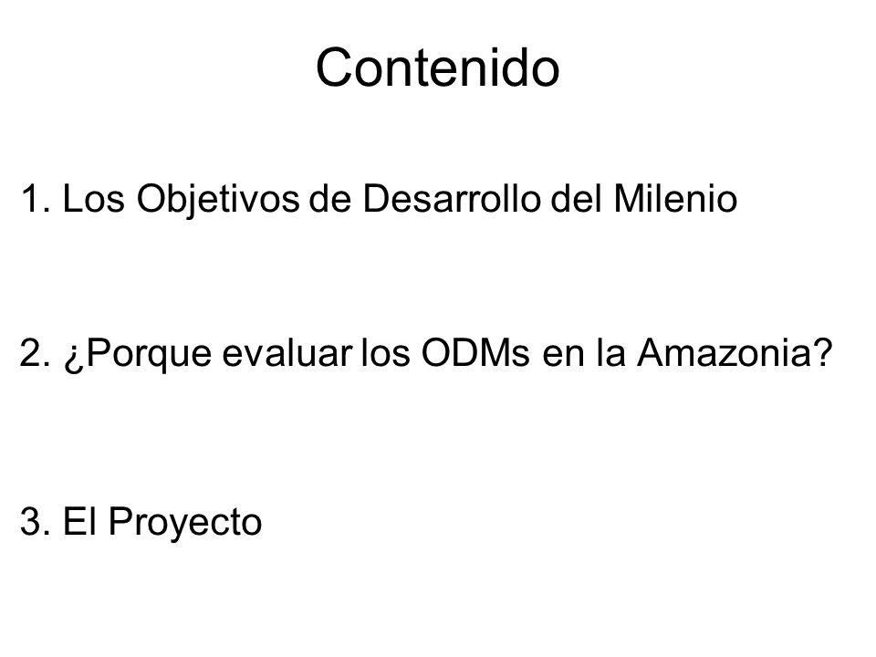 Contenido 1. Los Objetivos de Desarrollo del Milenio 2. ¿Porque evaluar los ODMs en la Amazonia? 3. El Proyecto