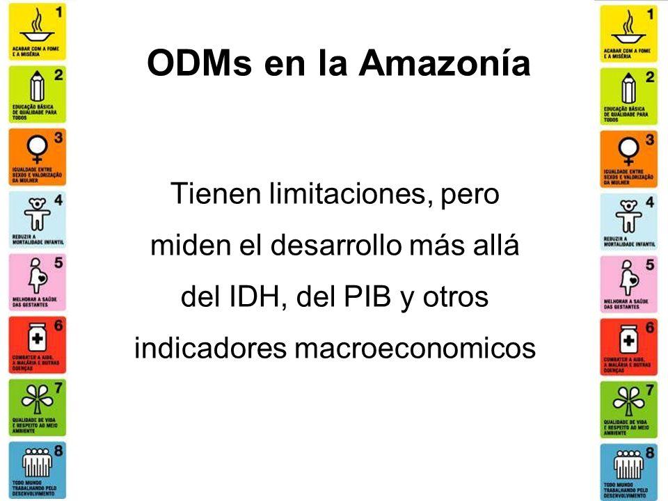 ODMs en la Amazonía Tienen limitaciones, pero miden el desarrollo más allá del IDH, del PIB y otros indicadores macroeconomicos