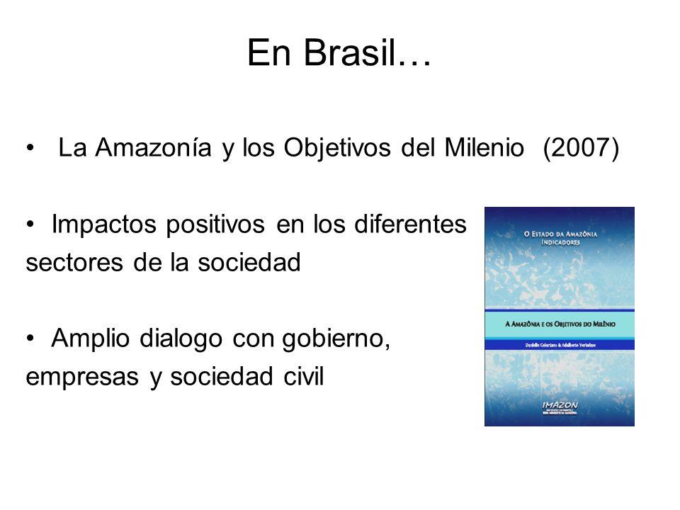 En Brasil… La Amazonía y los Objetivos del Milenio (2007) Impactos positivos en los diferentes sectores de la sociedad Amplio dialogo con gobierno, empresas y sociedad civil