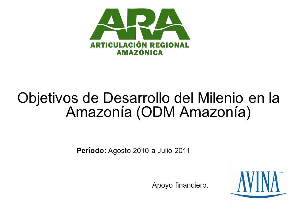 Objetivos de Desarrollo del Milenio en la Amazonía (ODM Amazonía) Apoyo financiero: Período: Agosto 2010 a Julio 2011