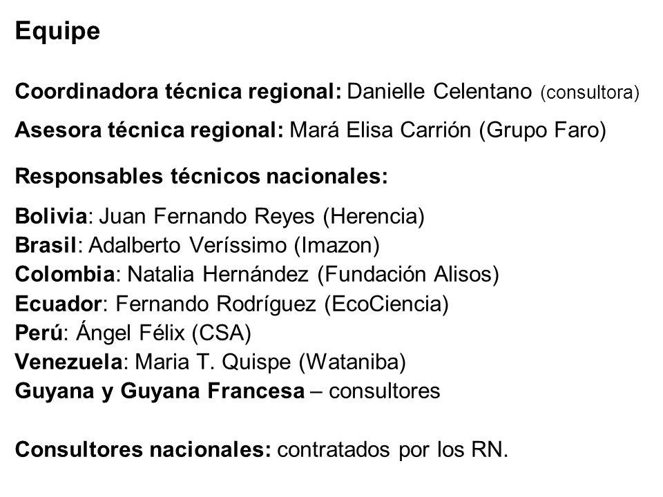 Equipe Coordinadora técnica regional: Danielle Celentano (consultora) Asesora técnica regional: Mará Elisa Carrión (Grupo Faro) Responsables técnicos