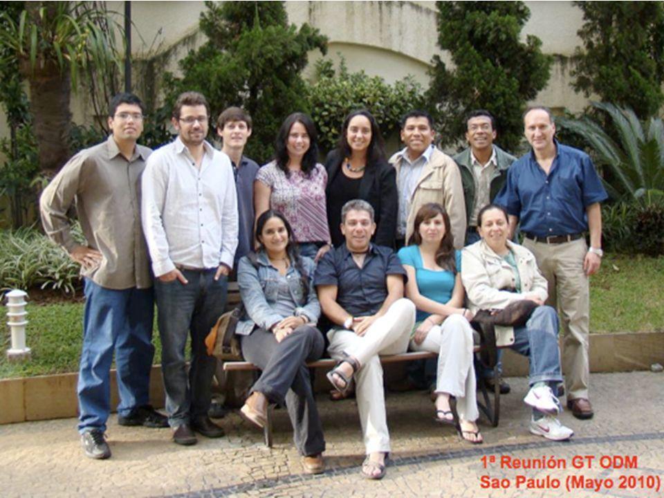 1ª Reunión GT ODM Sao Paulo (Mayo 2010)