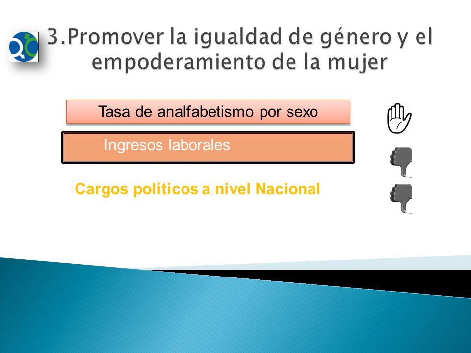Tasa de analfabetismo por sexo Ingresos laborales Cargos políticos a nivel Nacional