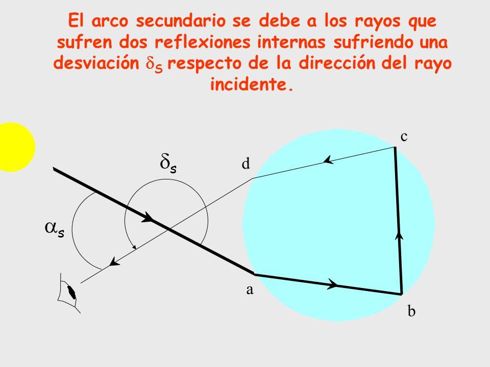 El arco secundario se debe a los rayos que sufren dos reflexiones internas sufriendo una desviación S respecto de la dirección del rayo incidente. d c