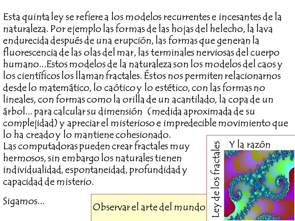 Ley de los fractales Y la razón Observar el arte del mundo Esta quinta ley se refiere a los modelos recurrentes e incesantes de la naturaleza. Por eje