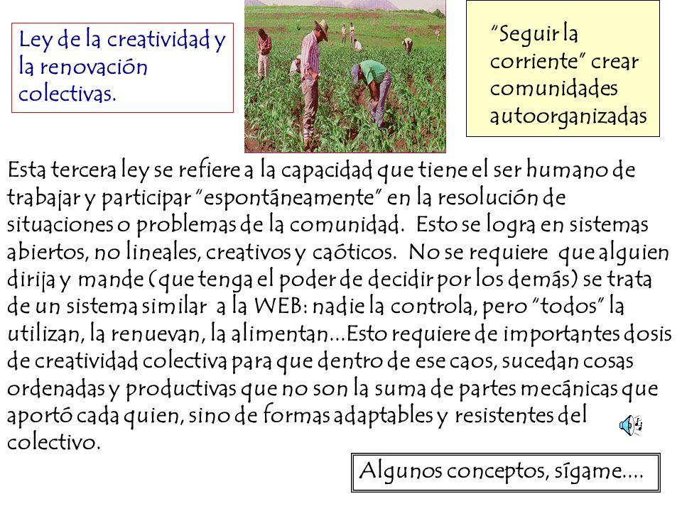 Ley de la creatividad y la renovación colectivas. Seguir la corriente crear comunidades autoorganizadas Esta tercera ley se refiere a la capacidad que