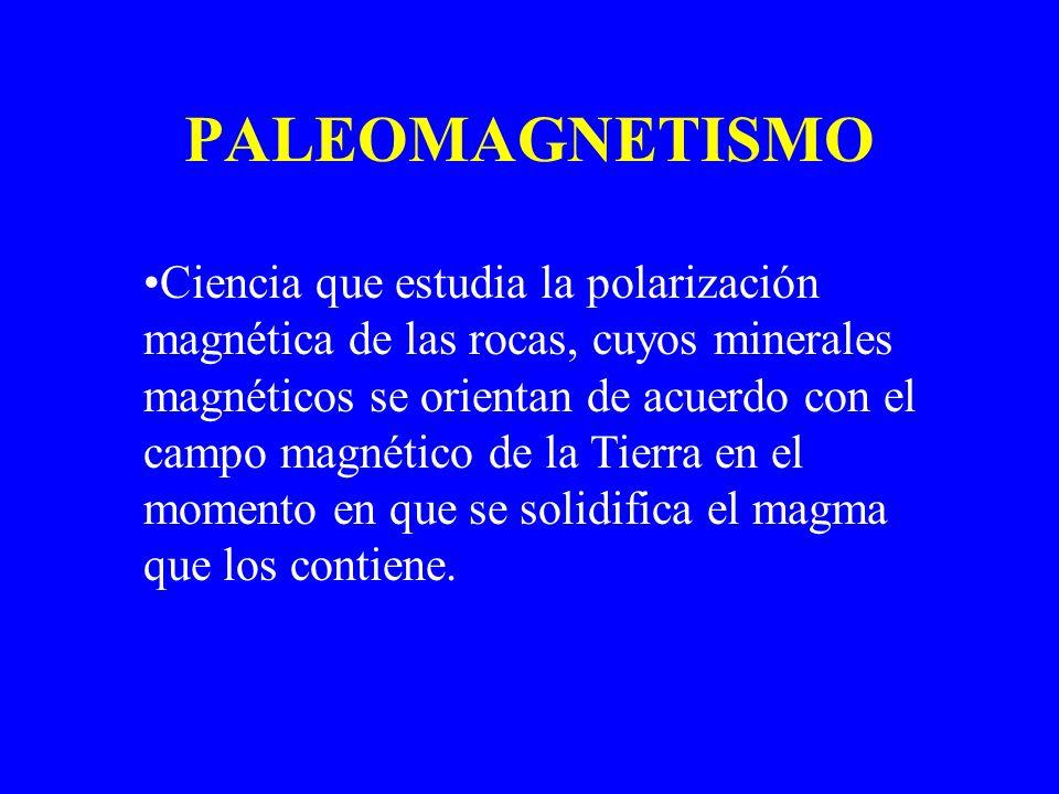 PALEOMAGNETISMO Ciencia que estudia la polarización magnética de las rocas, cuyos minerales magnéticos se orientan de acuerdo con el campo magnético d