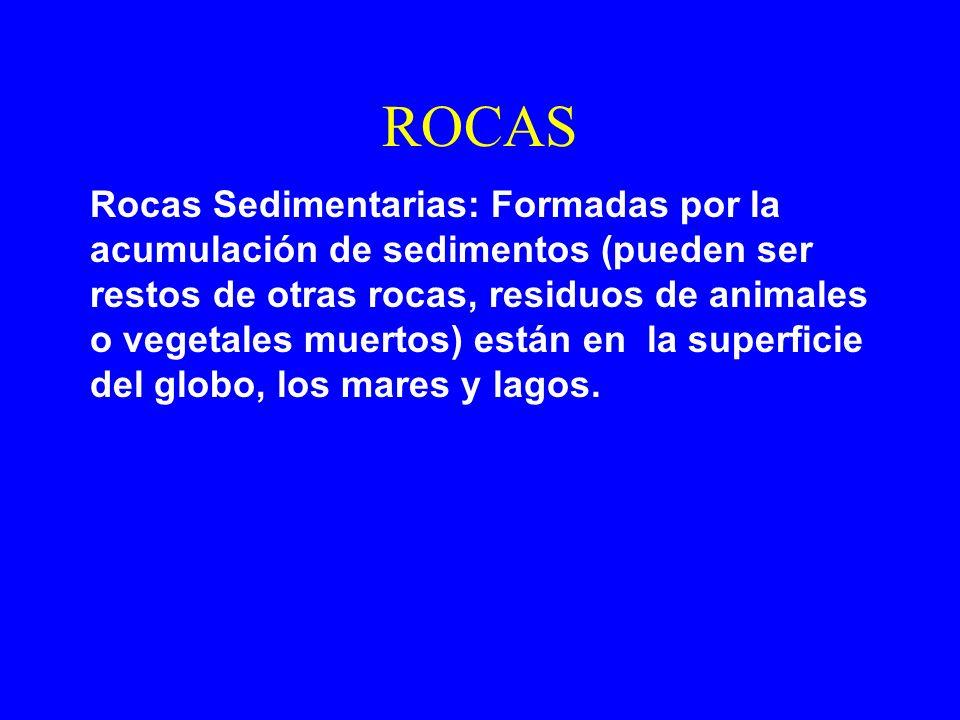 ROCAS Rocas Sedimentarias: Formadas por la acumulación de sedimentos (pueden ser restos de otras rocas, residuos de animales o vegetales muertos) está