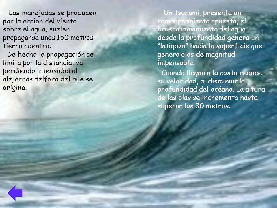No todos los terremotos generan tsunamis, sino sólo aquellos de magnitud considerable,que ocurren bajo el lecho marino y que son capaces de deformarlo.