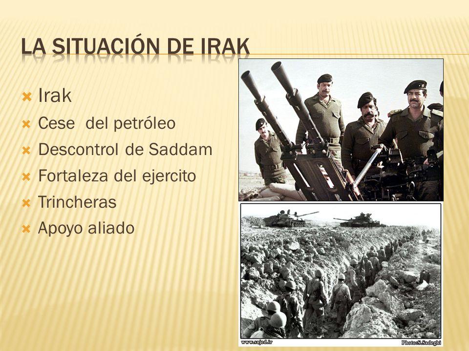 Irak Cese del petróleo Descontrol de Saddam Fortaleza del ejercito Trincheras Apoyo aliado