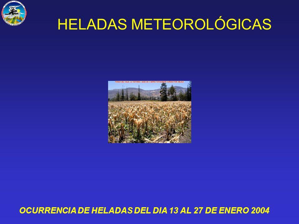 HELADAS METEOROLÓGICAS OCURRENCIA DE HELADAS DEL DIA 13 AL 27 DE ENERO 2004