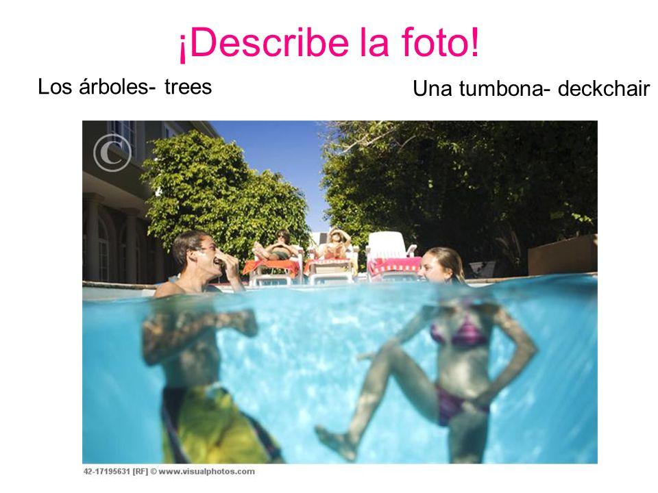 ¡Describe la foto! Los árboles- trees Una tumbona- deckchair