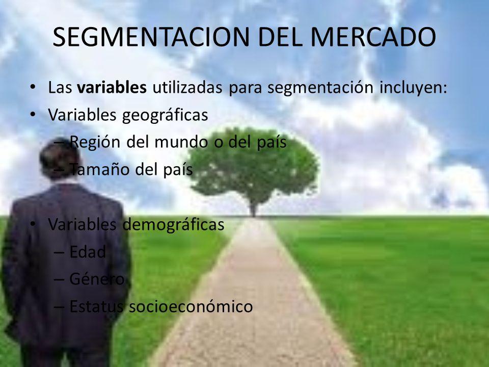 SEGMENTACION DEL MERCADO Las variables utilizadas para segmentación incluyen: Variables geográficas – Región del mundo o del país – Tamaño del país Va
