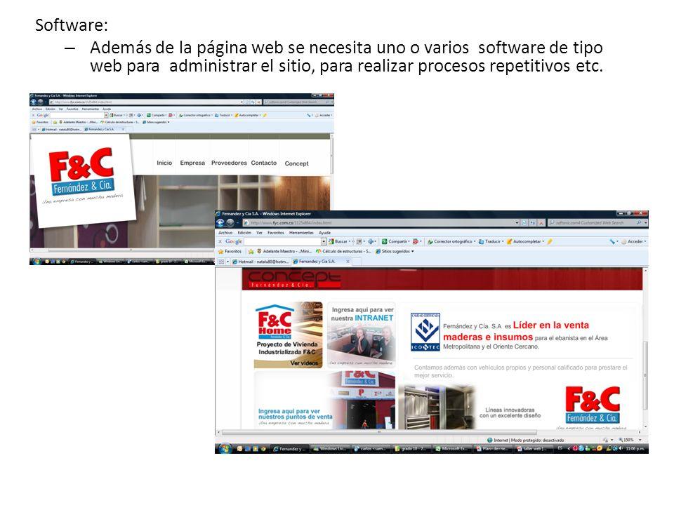 Software: – Además de la página web se necesita uno o varios software de tipo web para administrar el sitio, para realizar procesos repetitivos etc.