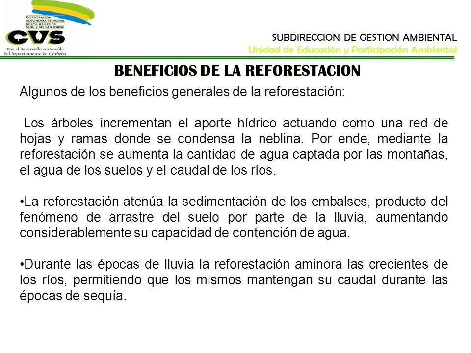 BENEFICIOS DE LA REFORESTACION Algunos de los beneficios generales de la reforestación: Los árboles incrementan el aporte hídrico actuando como una re