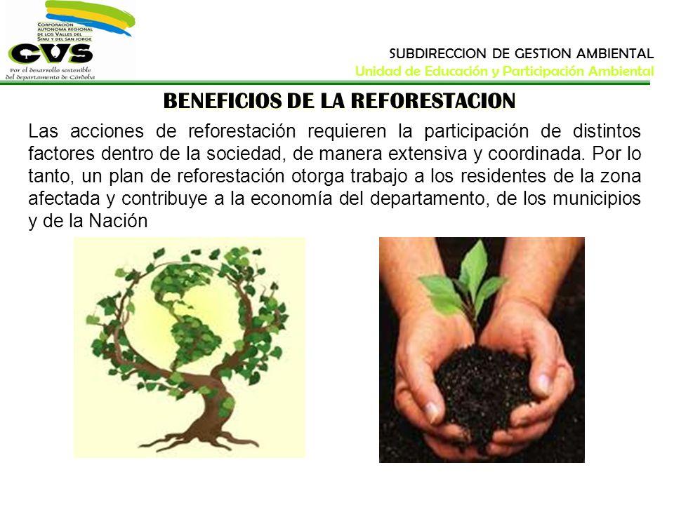 BENEFICIOS DE LA REFORESTACION Las acciones de reforestación requieren la participación de distintos factores dentro de la sociedad, de manera extensi