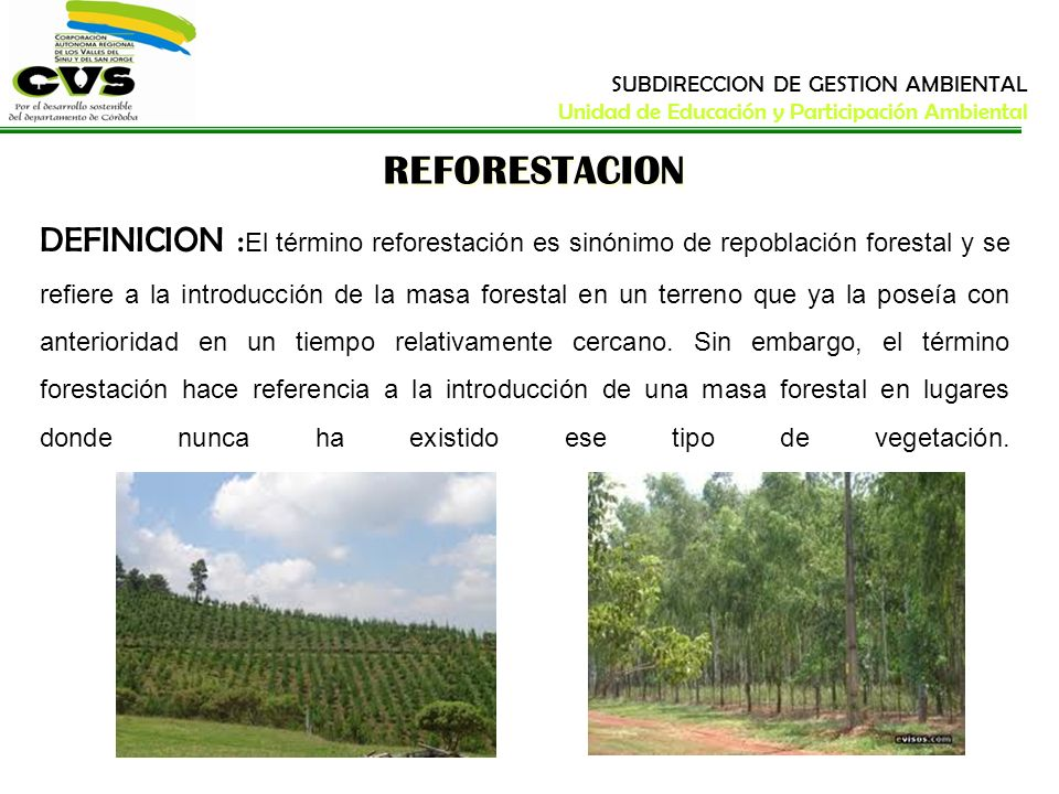 REFORESTACION DEFINICION : El término reforestación es sinónimo de repoblación forestal y se refiere a la introducción de la masa forestal en un terre