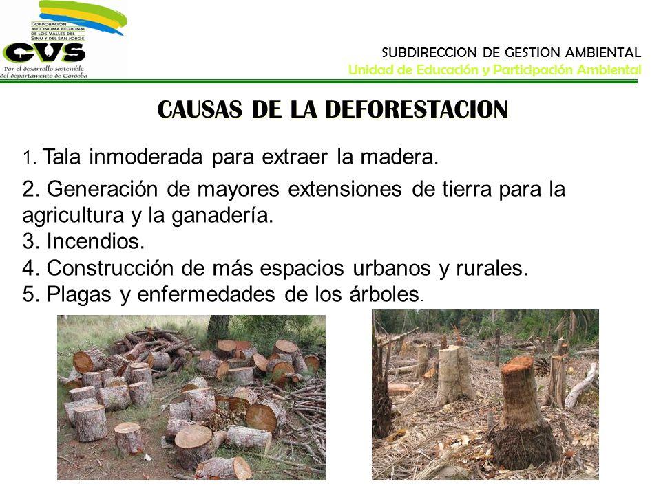 CAUSAS DE LA DEFORESTACION 1. Tala inmoderada para extraer la madera. 2. Generación de mayores extensiones de tierra para la agricultura y la ganaderí