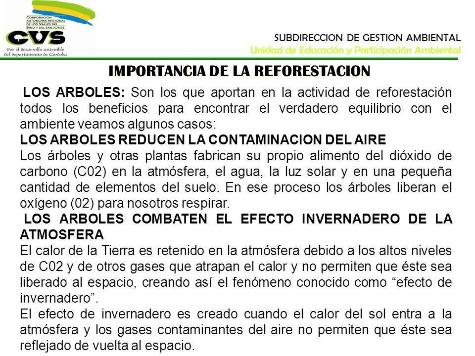 IMPORTANCIA DE LA REFORESTACION LOS ARBOLES: Son los que aportan en la actividad de reforestación todos los beneficios para encontrar el verdadero equ
