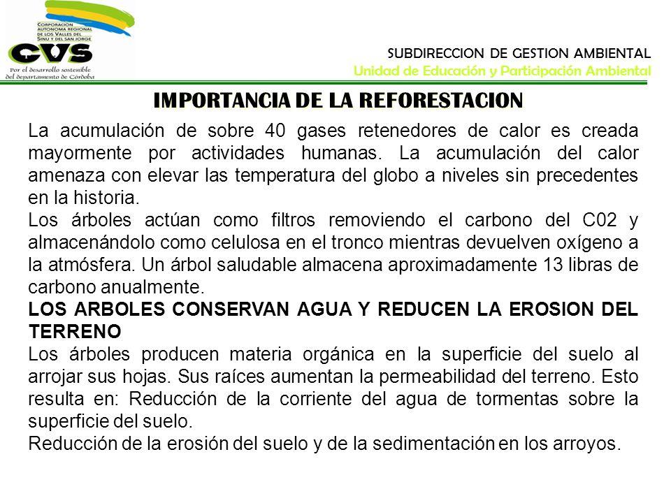 IMPORTANCIA DE LA REFORESTACION La acumulación de sobre 40 gases retenedores de calor es creada mayormente por actividades humanas. La acumulación del