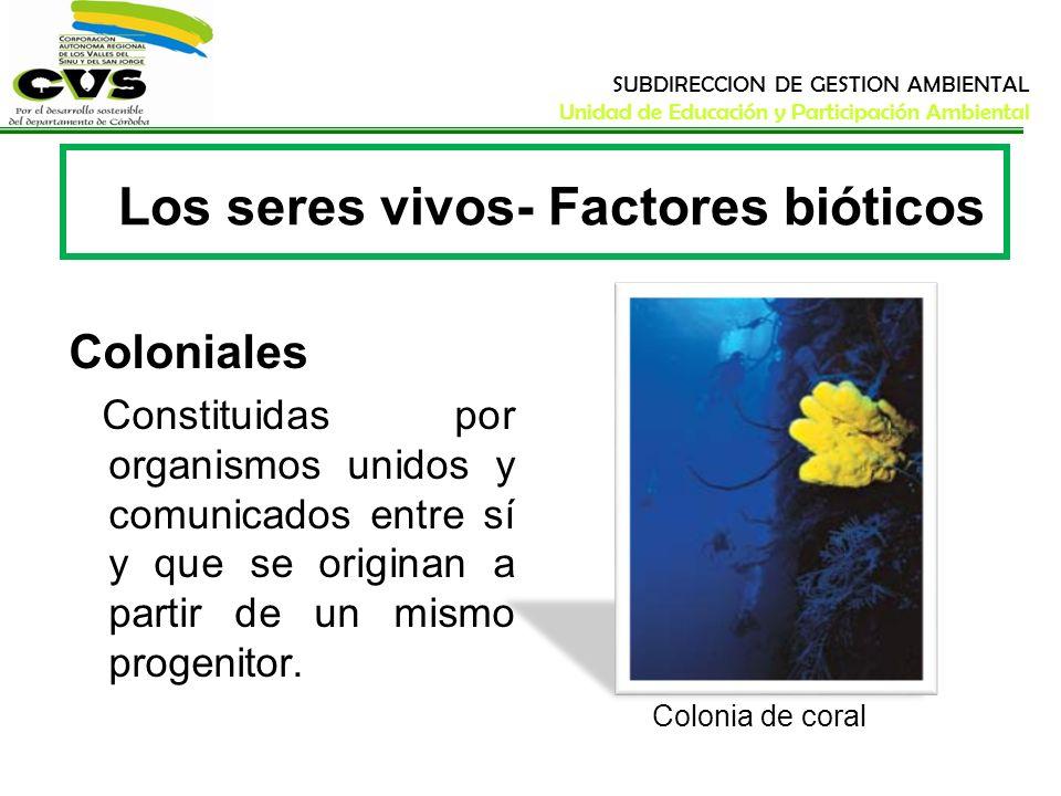 SUBDIRECCION DE GESTION AMBIENTAL Unidad de Educación y Participación Ambiental Los seres vivos- Factores bióticos Coloniales Constituidas por organis