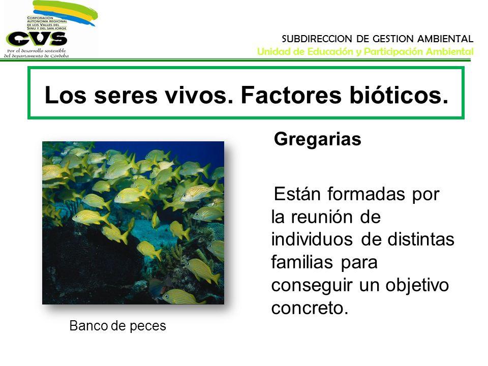 SUBDIRECCION DE GESTION AMBIENTAL Unidad de Educación y Participación Ambiental Los seres vivos. Factores bióticos. Banco de peces Gregarias Están for