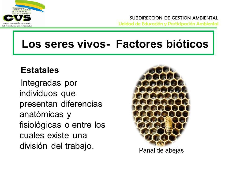 SUBDIRECCION DE GESTION AMBIENTAL Unidad de Educación y Participación Ambiental Los seres vivos- Factores bióticos Estatales Integradas por individuos