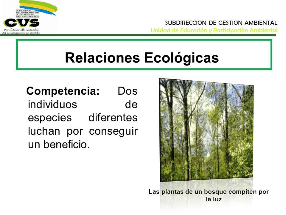 SUBDIRECCION DE GESTION AMBIENTAL Unidad de Educación y Participación Ambiental Relaciones Ecológicas Competencia: Dos individuos de especies diferent