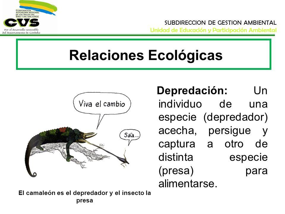 SUBDIRECCION DE GESTION AMBIENTAL Unidad de Educación y Participación Ambiental Relaciones Ecológicas Depredación: Un individuo de una especie (depred