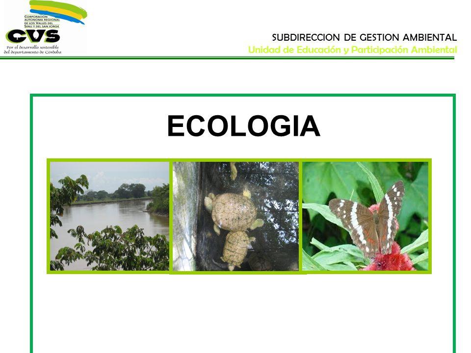 ECOLOGIA SUBDIRECCION DE GESTION AMBIENTAL Unidad de Educación y Participación Ambiental