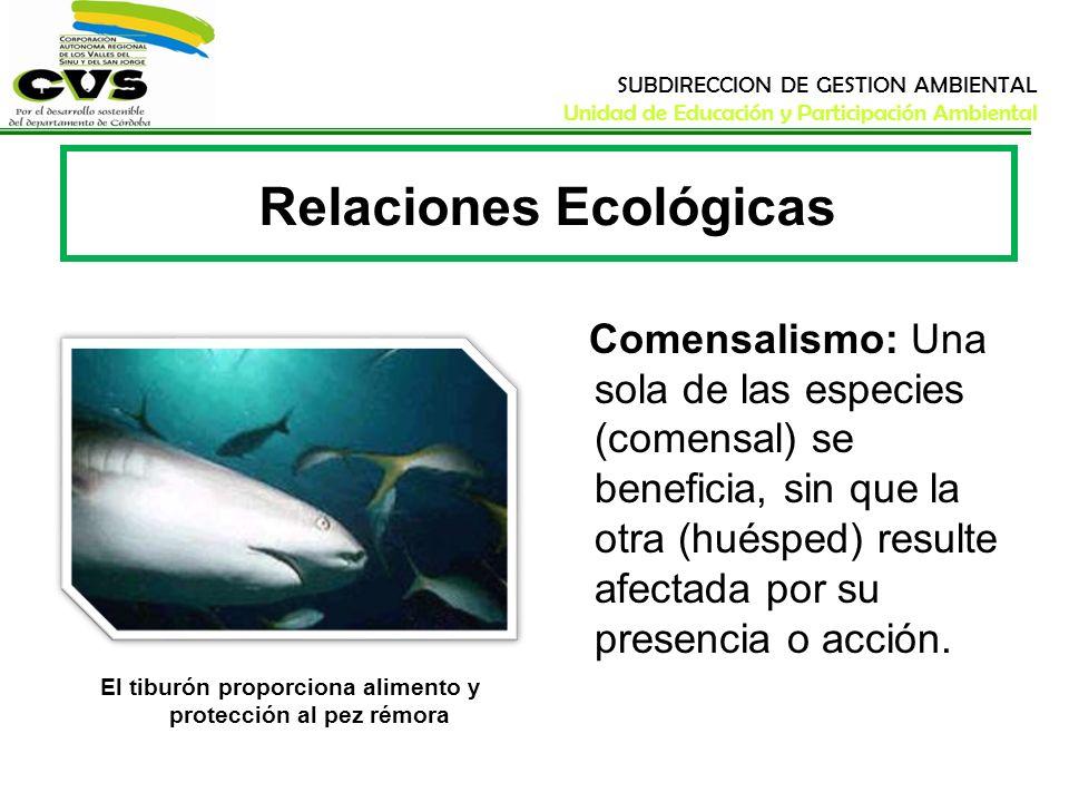 SUBDIRECCION DE GESTION AMBIENTAL Unidad de Educación y Participación Ambiental Relaciones Ecológicas Comensalismo: Una sola de las especies (comensal