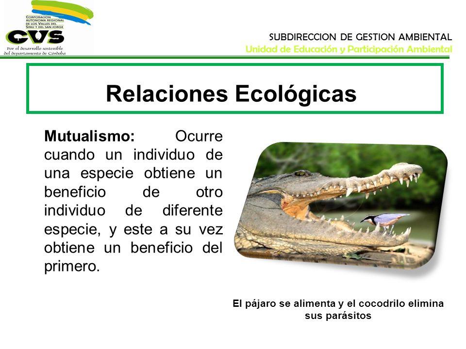 SUBDIRECCION DE GESTION AMBIENTAL Unidad de Educación y Participación Ambiental Relaciones Ecológicas Mutualismo: Ocurre cuando un individuo de una es
