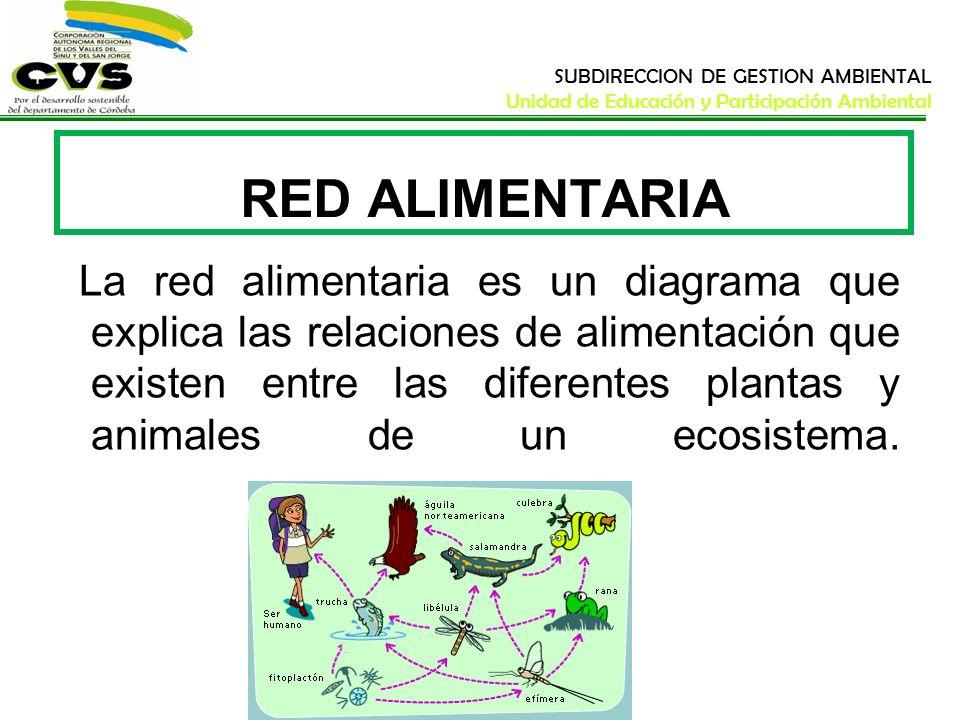 SUBDIRECCION DE GESTION AMBIENTAL Unidad de Educación y Participación Ambiental RED ALIMENTARIA La red alimentaria es un diagrama que explica las rela