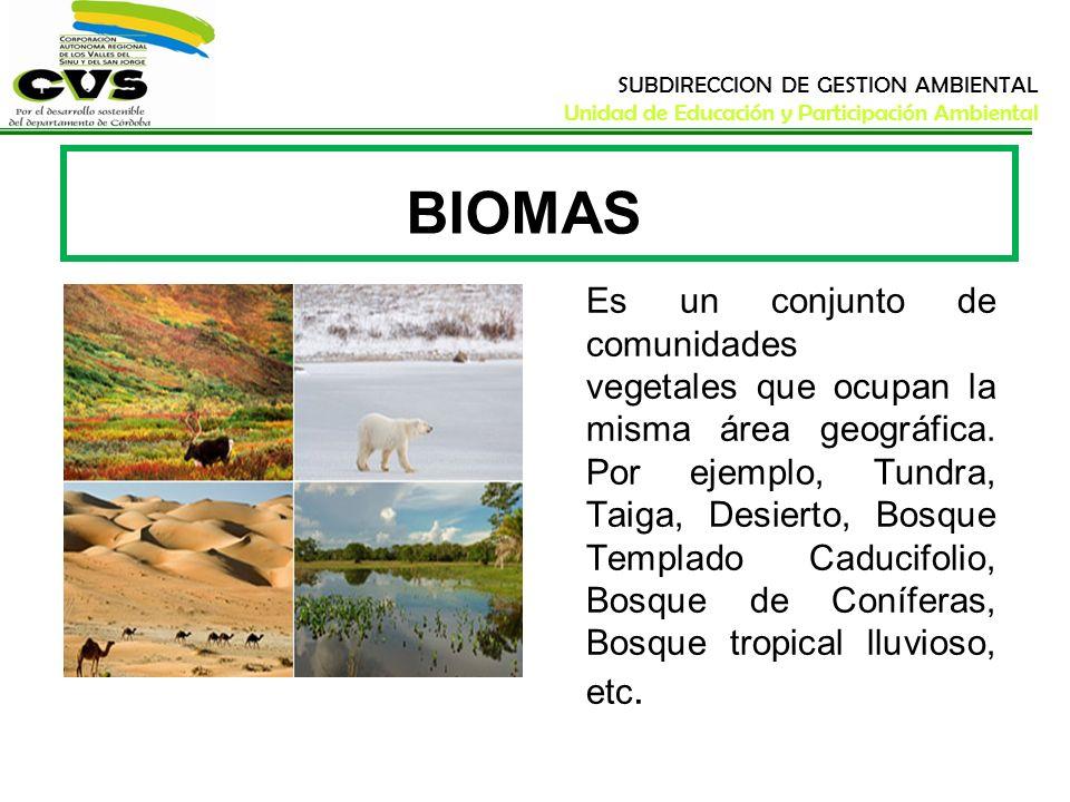 SUBDIRECCION DE GESTION AMBIENTAL Unidad de Educación y Participación Ambiental BIOMAS Es un conjunto de comunidades vegetales que ocupan la misma áre