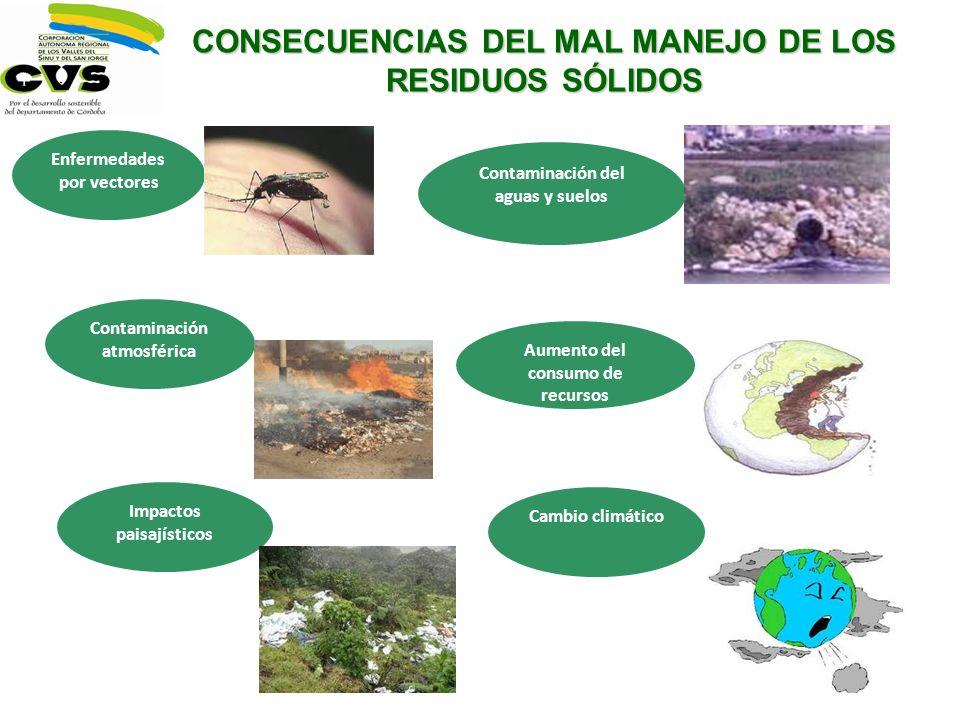 Enfermedades por vectores Contaminación atmosférica Impactos paisajísticos Aumento del consumo de recursos Cambio climático CONSECUENCIAS DEL MAL MANE