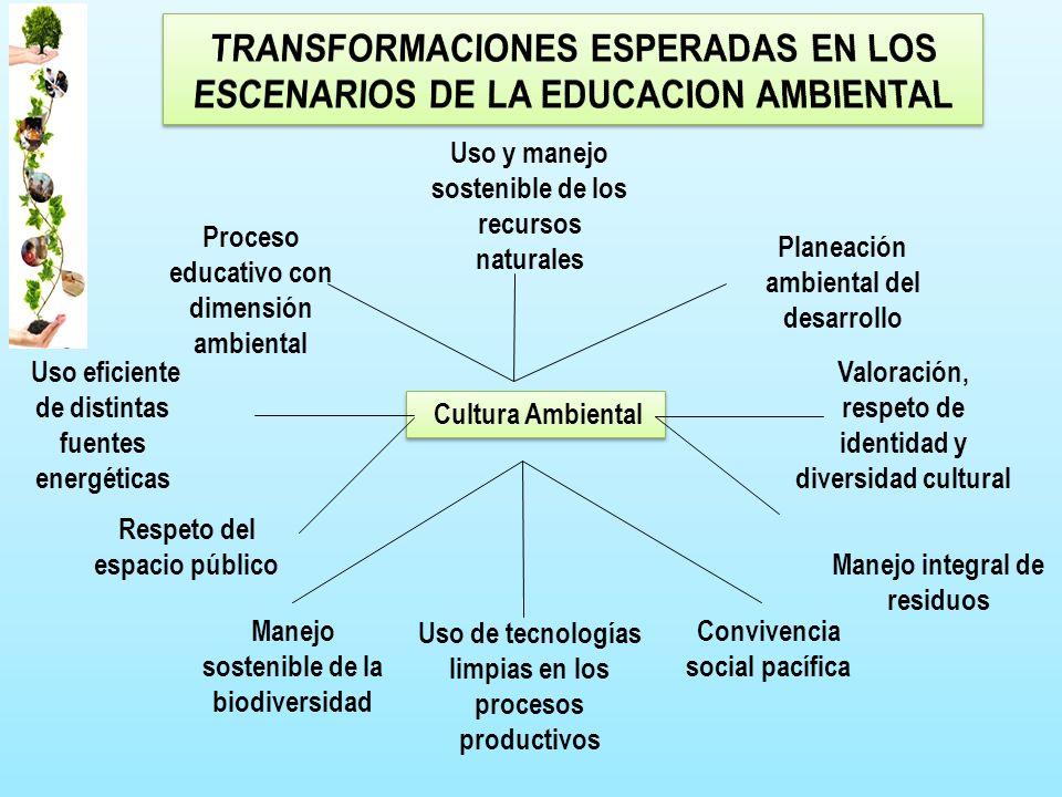 Cultura Ambiental Respeto del espacio público Valoración, respeto de identidad y diversidad cultural Uso y manejo sostenible de los recursos naturales