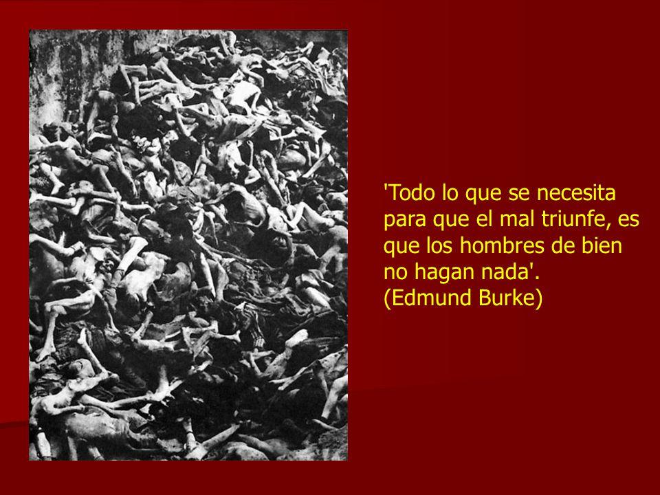 'Todo lo que se necesita para que el mal triunfe, es que los hombres de bien no hagan nada'. (Edmund Burke)