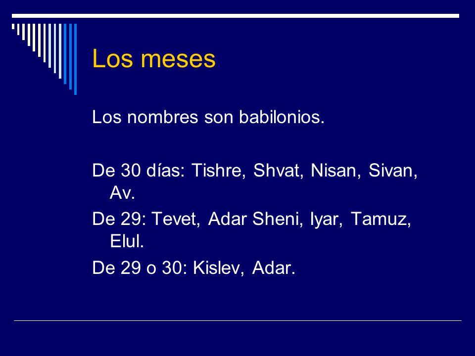 Los meses Los nombres son babilonios. De 30 días: Tishre, Shvat, Nisan, Sivan, Av. De 29: Tevet, Adar Sheni, Iyar, Tamuz, Elul. De 29 o 30: Kislev, Ad