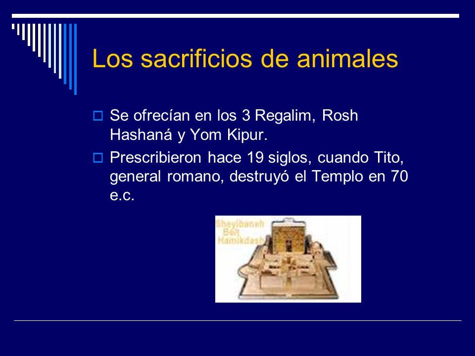 Los sacrificios de animales Se ofrecían en los 3 Regalim, Rosh Hashaná y Yom Kipur. Prescribieron hace 19 siglos, cuando Tito, general romano, destruy