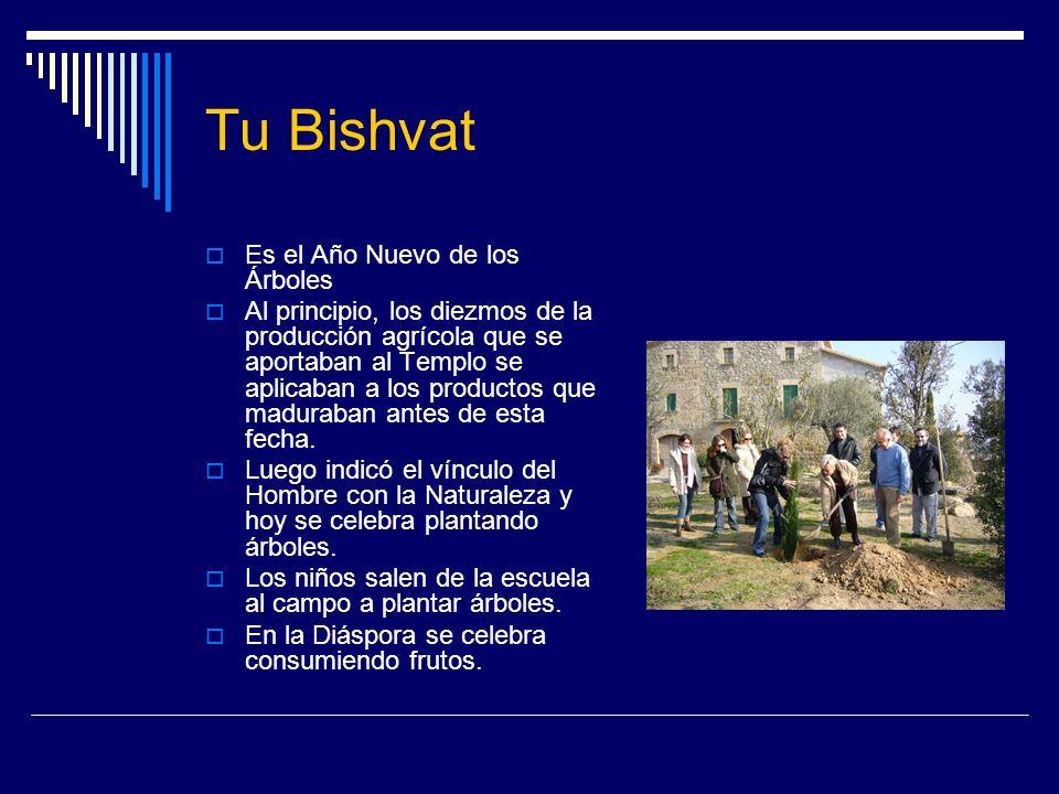 Tu Bishvat Es el Año Nuevo de los Árboles Al principio, los diezmos de la producción agrícola que se aportaban al Templo se aplicaban a los productos
