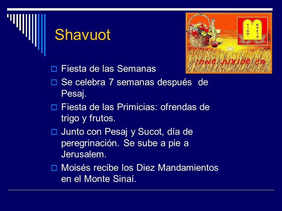 Shavuot Fiesta de las Semanas Se celebra 7 semanas después de Pesaj. Fiesta de las Primicias: ofrendas de trigo y frutos. Junto con Pesaj y Sucot, día