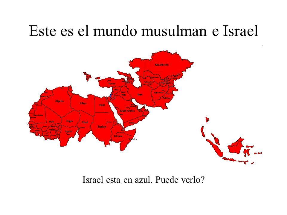 Este es el mundo musulman Estos son los paises del mundo gobernados por musulmanes