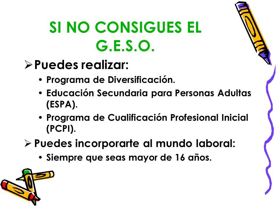 SI NO CONSIGUES EL G.E.S.O. Puedes realizar: Programa de Diversificación. Educación Secundaria para Personas Adultas (ESPA). Programa de Cualificación