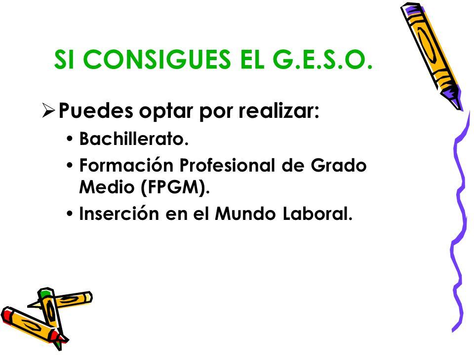 SI CONSIGUES EL G.E.S.O. Puedes optar por realizar: Bachillerato. Formación Profesional de Grado Medio (FPGM). Inserción en el Mundo Laboral.