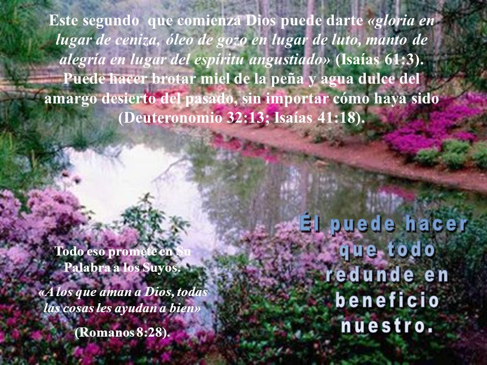 Si has aceptado a jesus como Salvador no tienes por que cargar Con culpa y remordimientos Todos los errores, pesares y penas del pasado año se encuent