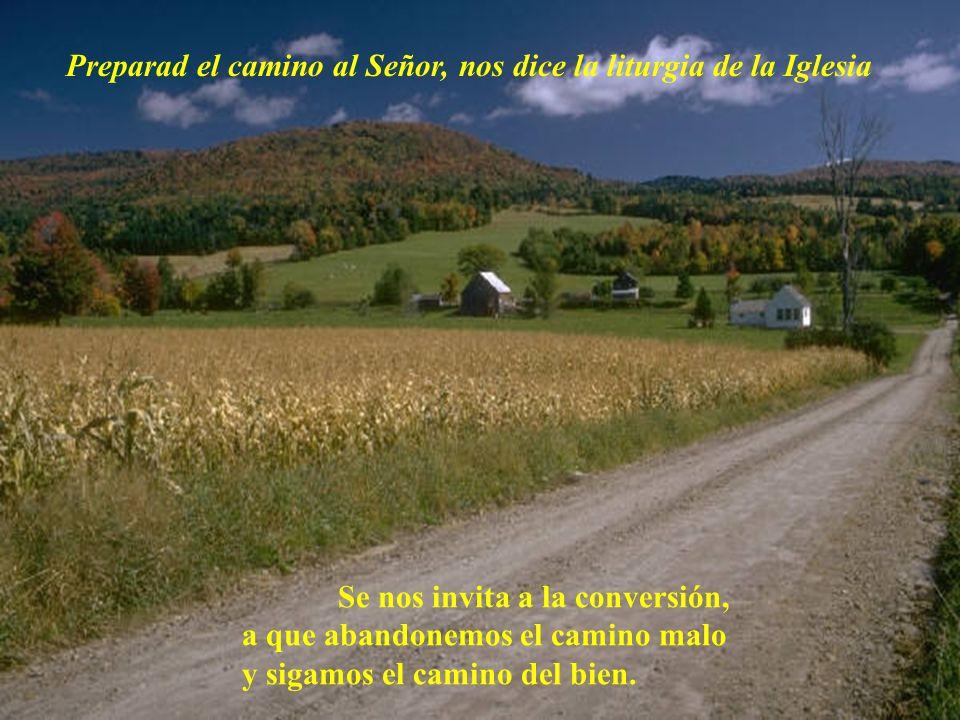 Es un tiempo de preparación y espera gozosa ante la venida de Jesús, que viene a salvarnos.