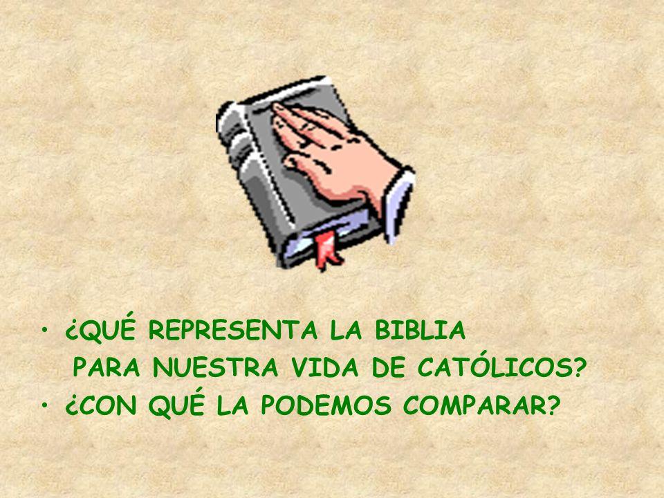 ¿QUÉ REPRESENTA LA BIBLIA PARA NUESTRA VIDA DE CATÓLICOS? ¿CON QUÉ LA PODEMOS COMPARAR?